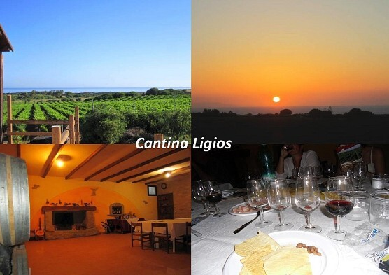Cantina Ligios partner International Camping Valledoria